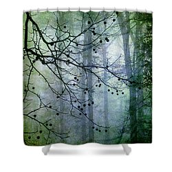 The Forest Cathedral Shower Curtain by Judi Bagwell