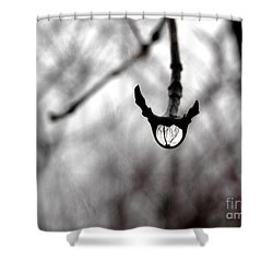 The Foretelling - Raindrop Reflection Shower Curtain