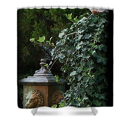 The Garden Shower Curtain by Karen Harrison