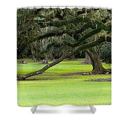 The Giving Tree Shower Curtain by Scott Pellegrin
