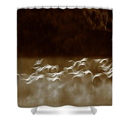 The Glades Shower Curtain by Bruce J Robinson