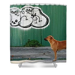 The Graffiti Artist Shower Curtain by Nola Lee Kelsey