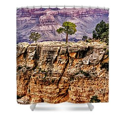 The Grand Canyon Iv Shower Curtain by Tom Prendergast