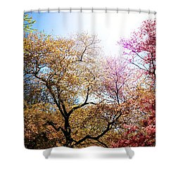 The Grandest Of Dreams - Cherry Blossoms - Brooklyn Botanic Garden Shower Curtain by Vivienne Gucwa