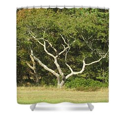 The Hand Of Nature Shower Curtain
