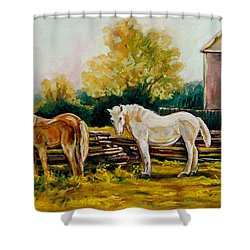 The Horse Ranch Eastern Townships Quebec Shower Curtain by Carole Spandau