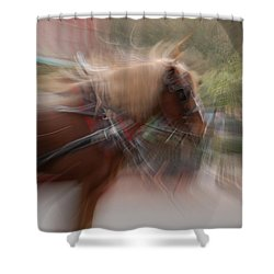 The Horse Shower Curtain by Randy J Heath