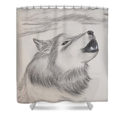 Shower Curtain featuring the drawing The Howler by Maria Urso