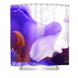 The Intimate Iris Shower Curtain by Jerome Stumphauzer