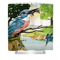 The Kingfisher Shower Curtain by D A Forrest