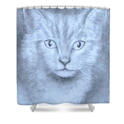 The Kitten Shower Curtain by Jack Skinner