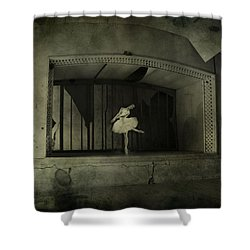 The Last Song  Shower Curtain by Jerry Cordeiro