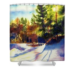 The Last Traces II Shower Curtain by Kathy Braud