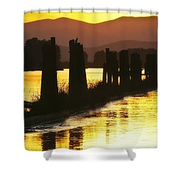 Shower Curtain featuring the photograph The Lost River Of Gold by Albert Seger