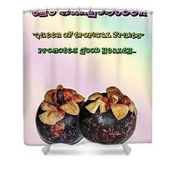 The Mangosteen - Queen Of Tropical Fruits Shower Curtain by Kaye Menner