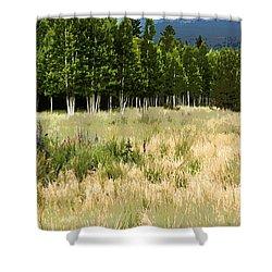The Meadow Digital Art Shower Curtain by Phyllis Denton