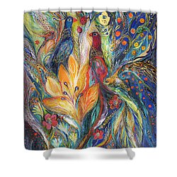 The Melody Of Love Shower Curtain by Elena Kotliarker