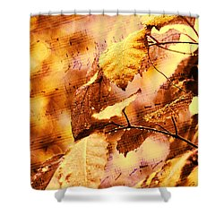 The Melody Of The Golden Rain Shower Curtain by Jenny Rainbow