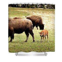 The Mighty Bison Shower Curtain by Ellen Heaverlo