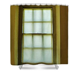The Mustard Window Shower Curtain by Steve Taylor