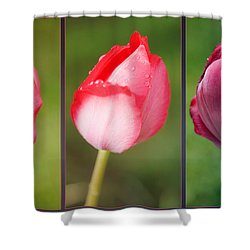 The One And Only Shower Curtain by Jutta Maria Pusl