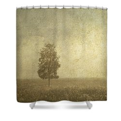 The One Shower Curtain by Jenny Rainbow