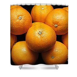 The Oranges Shower Curtain by Andee Design