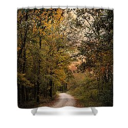 The Path Less Traveled 2 Shower Curtain by Jai Johnson