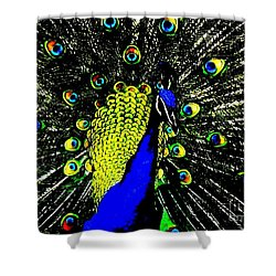 Shower Curtain featuring the photograph The Peacock by John King