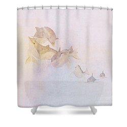 The Pod Shower Curtain by John Edwards