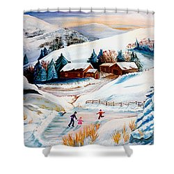 The Pond In Winter Shower Curtain