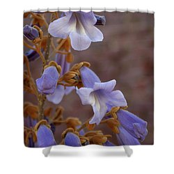 Shower Curtain featuring the photograph The Princess Flower by Paul Mashburn