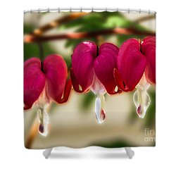 The Red Heart Shower Curtain by Robert Bales