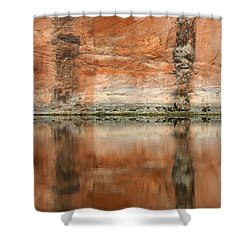 The Reflecting Wall Shower Curtain by Nola Lee Kelsey