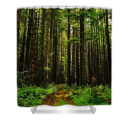 The Road Into The Green  Shower Curtain by Jeff Swan