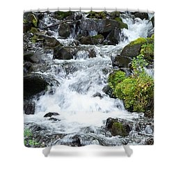 Shower Curtain featuring the photograph The Roadside Stream by Chalet Roome-Rigdon