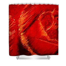 The Rose II Shower Curtain by David Patterson