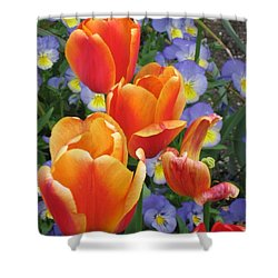 The Secret Life Of Tulips - 2 Shower Curtain by Rory Sagner