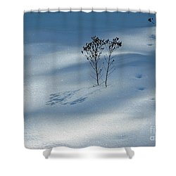Shower Curtain featuring the photograph The Shadow Of Loneliness by Ausra Huntington nee Paulauskaite