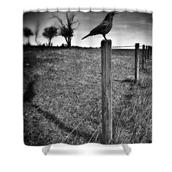 The Silent Warn  Shower Curtain by Jerry Cordeiro
