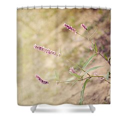 The Simple Things Shower Curtain by Jai Johnson