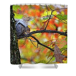 Shower Curtain featuring the photograph The Squirrel Umbrella by Paul Mashburn