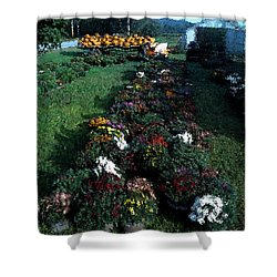 The Stand In Autumn Shower Curtain