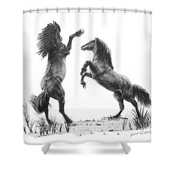 the Stand Shower Curtain