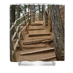 The Trail To The Top Shower Curtain by Ernie Echols