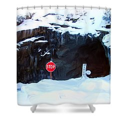 The Tunnel View Tunnel Shower Curtain by Heidi Smith