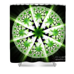 The Vision Of The Healer Shower Curtain by Danuta Bennett