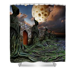 The Wall Shower Curtain by Mariusz Zawadzki