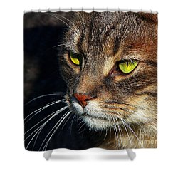 Shower Curtain featuring the photograph The Watcher by Davandra Cribbie