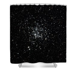 The Wild Duck Cluster Shower Curtain by Rolf Geissinger